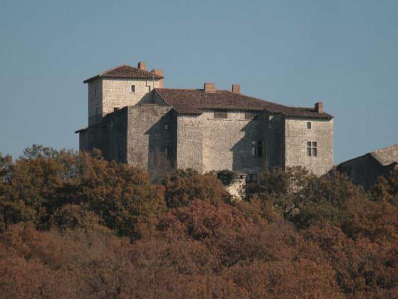Sale house / villa Avezan 890000€ - Picture 1