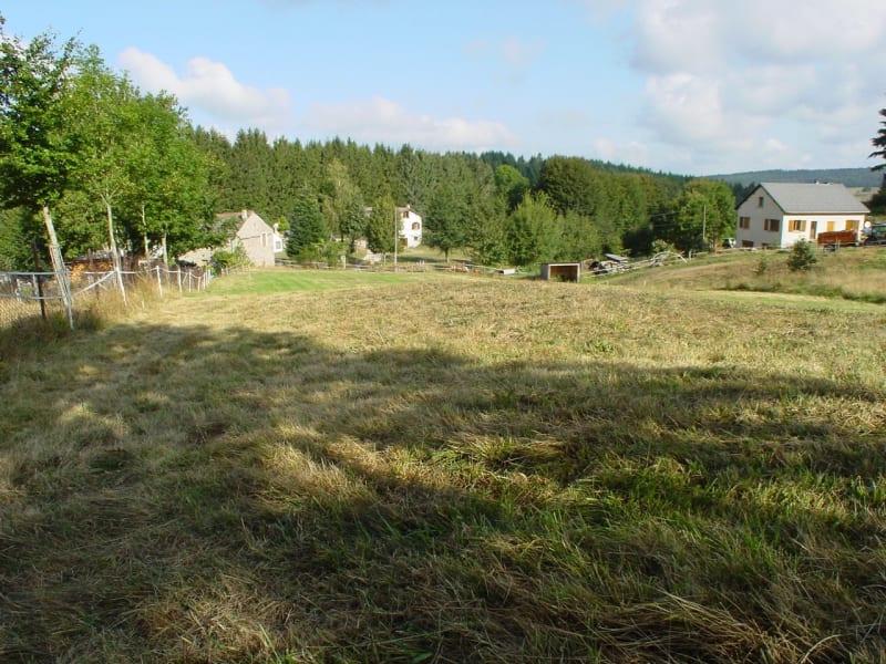 Vente terrain Le mas de tence 38000€ - Photo 4