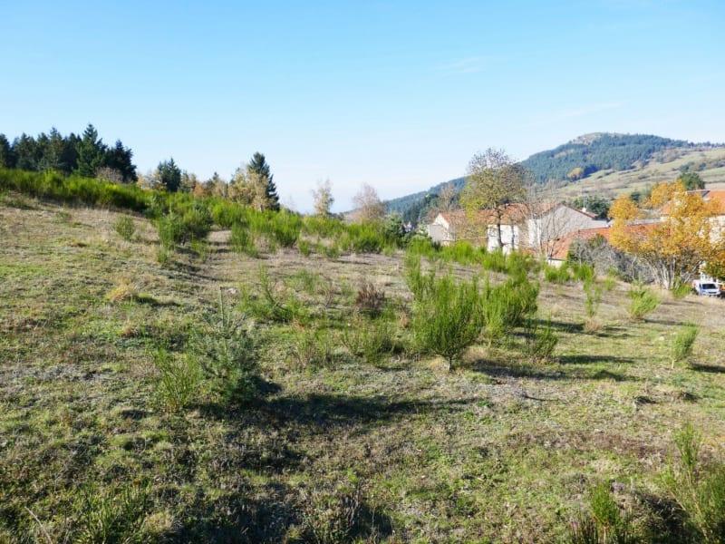 Sale site Laussonne 20800€ - Picture 2