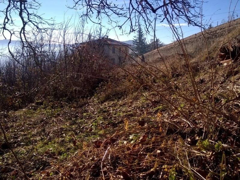 Vente terrain Polignac 80000€ - Photo 3