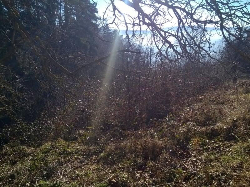 Vente terrain Polignac 80000€ - Photo 2