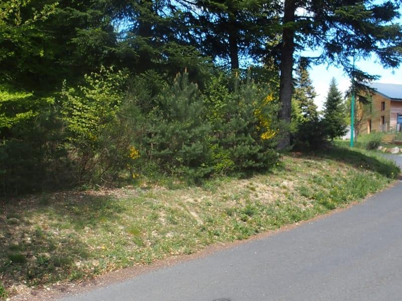 Vente terrain Le chambon sur lignon 80000€ - Photo 2
