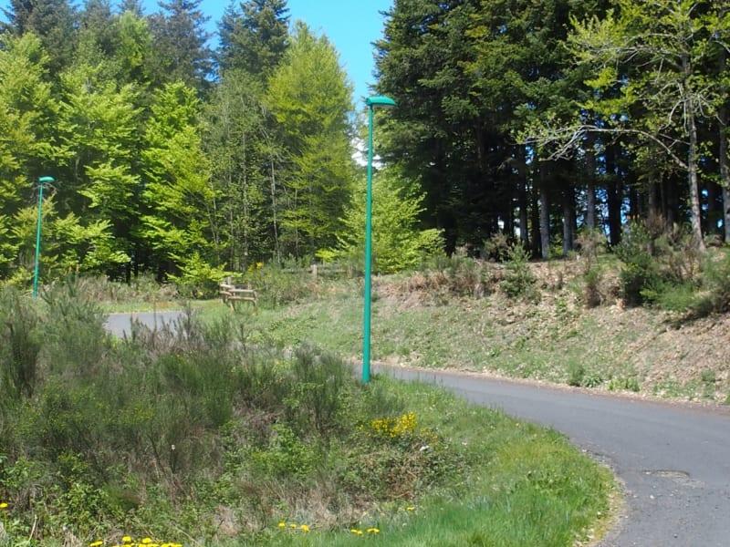 Vente terrain Le chambon sur lignon 80000€ - Photo 3