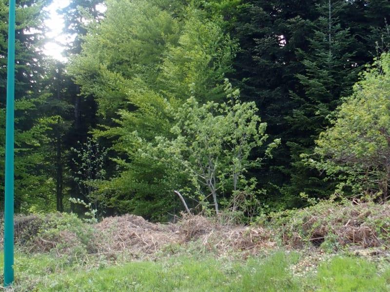Vente terrain Le chambon sur lignon 80000€ - Photo 1
