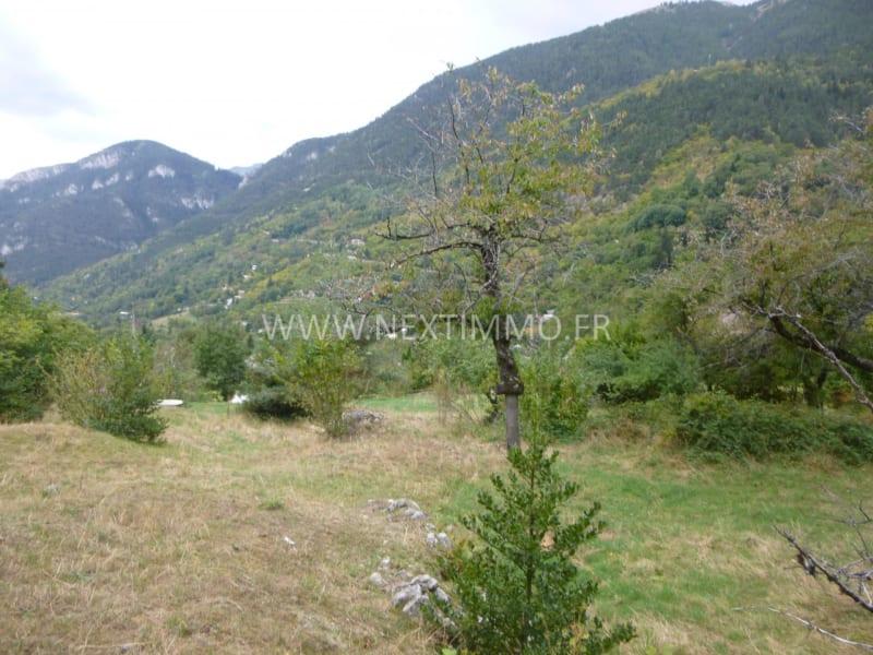 Vente terrain Saint-martin-vésubie 130000€ - Photo 7