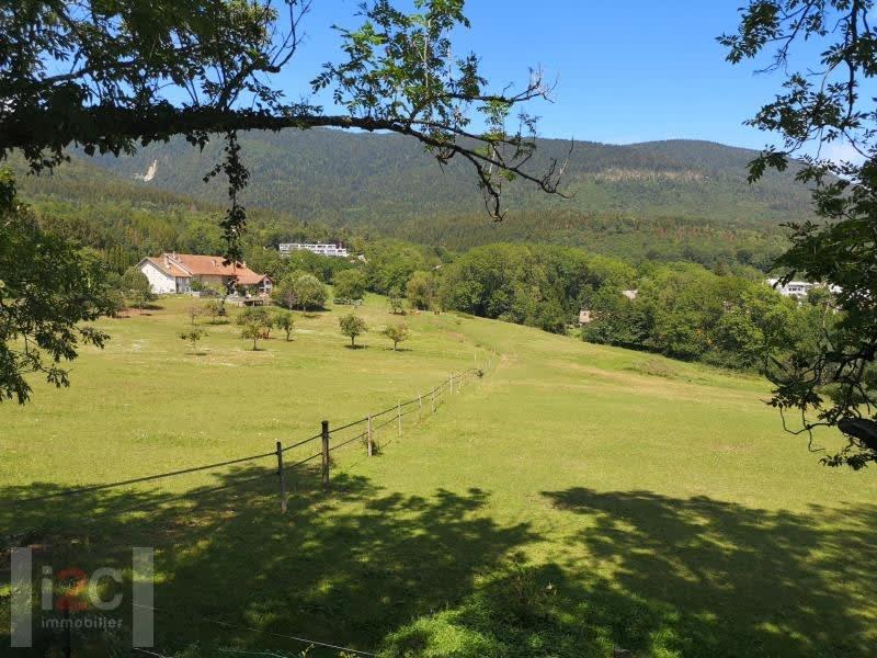 Sale house / villa Gex 545000€ - Picture 9