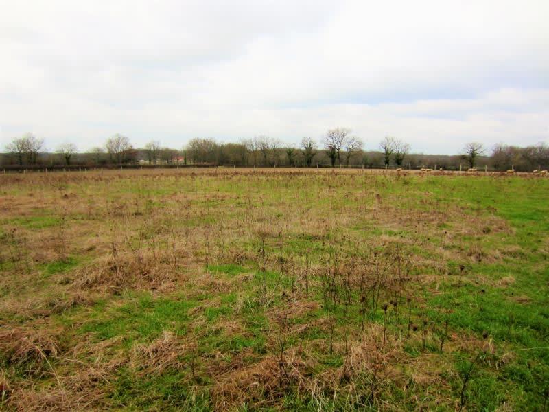 Vente terrain Marigny 65000€ - Photo 1