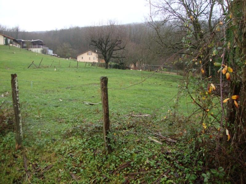 Vente terrain Verjon 60000€ - Photo 2