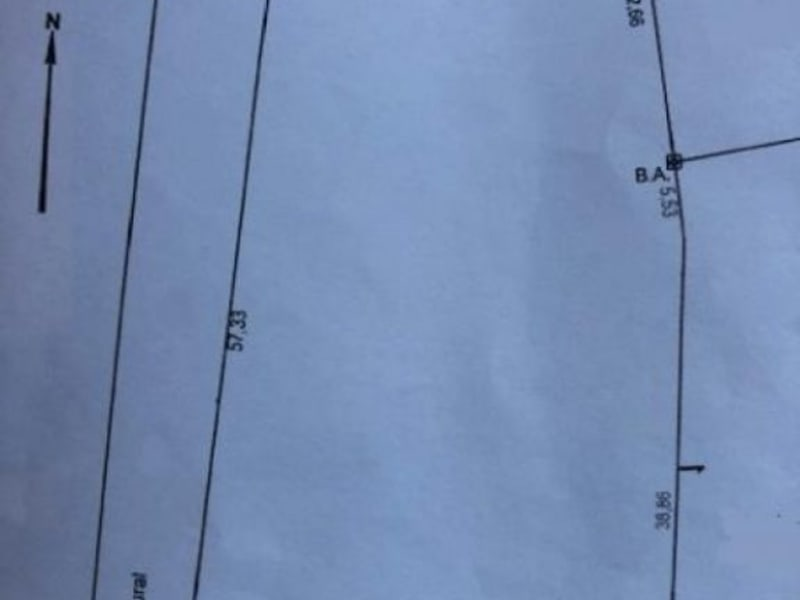 Vente terrain Villeneuve sur bellot 55000€ - Photo 2