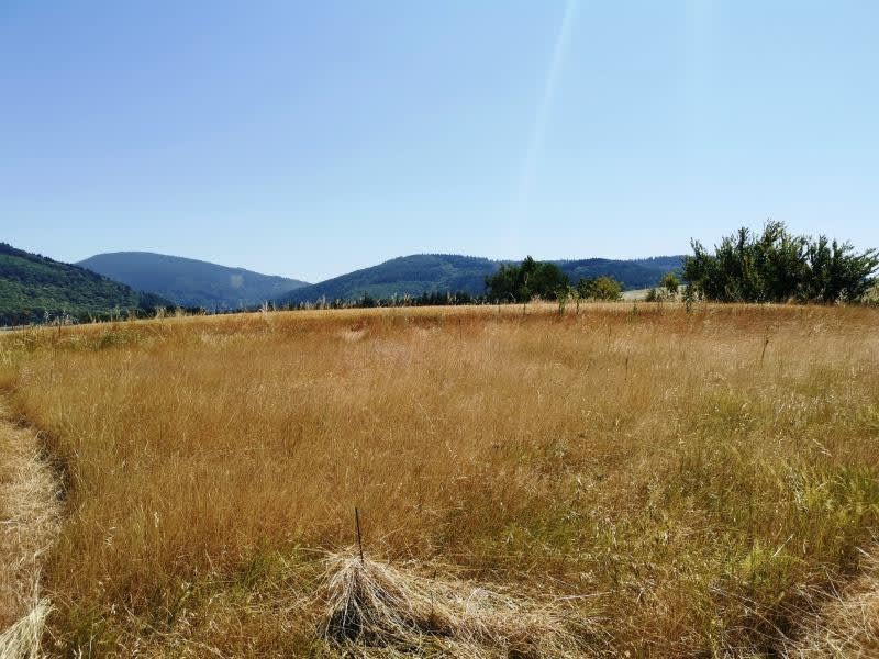 Vente terrain Escoussens 61000€ - Photo 6