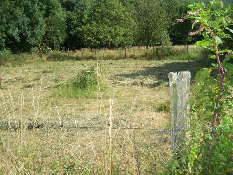 Vente terrain Secteur de st amans soult 23000€ - Photo 2