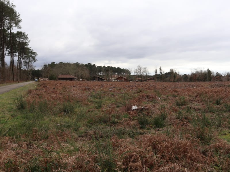 Vente terrain Vielle saint girons 150375€ - Photo 1
