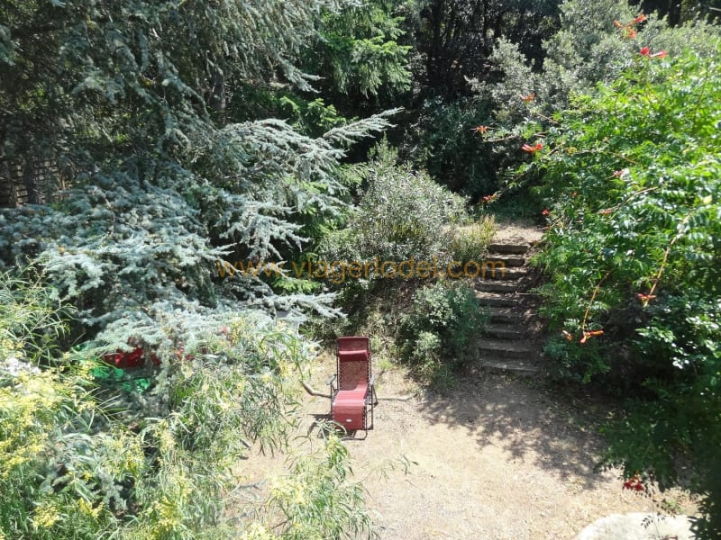 Life annuity house / villa Le boulou 63500€ - Picture 11