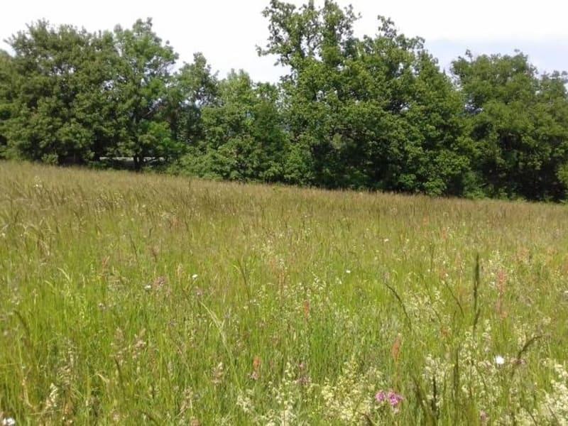 Vente terrain Labruguiere 60000€ - Photo 2