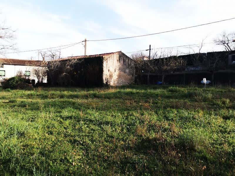 Vente terrain Labruguiere 40000€ - Photo 3