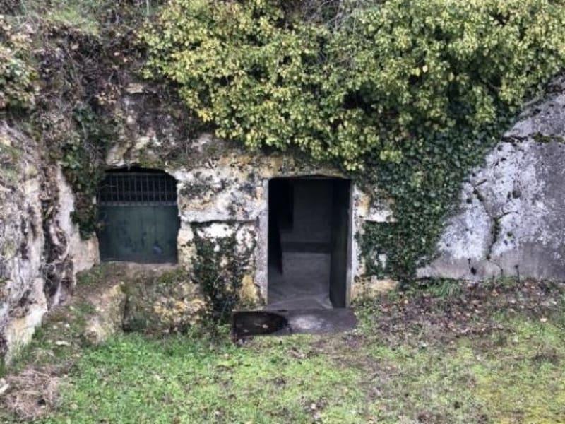 Sale house / villa Montlouis sur loire 10000€ - Picture 1