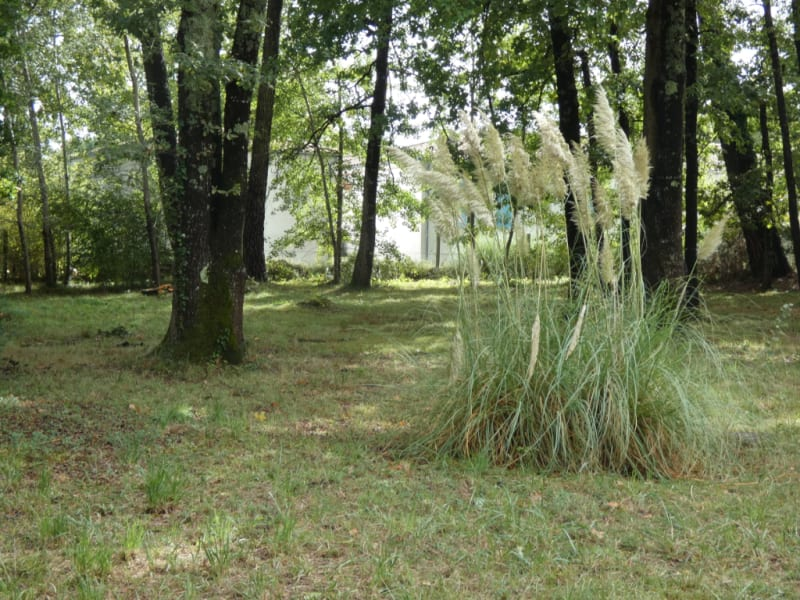 Vente terrain Breuillet 210 000€ - Photo 2