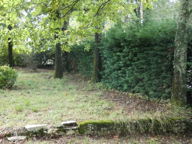 Vente terrain Breuillet 210 000€ - Photo 6