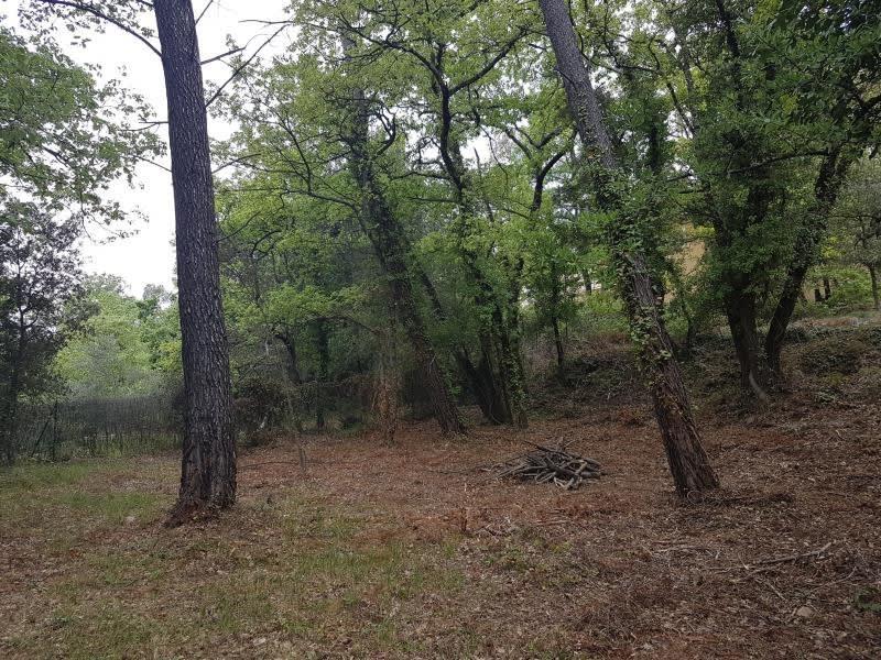 Vente terrain Brignoles 108000€ - Photo 1