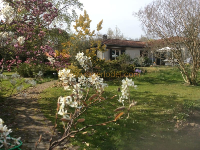Life annuity house / villa Saint-gaudens 95000€ - Picture 1