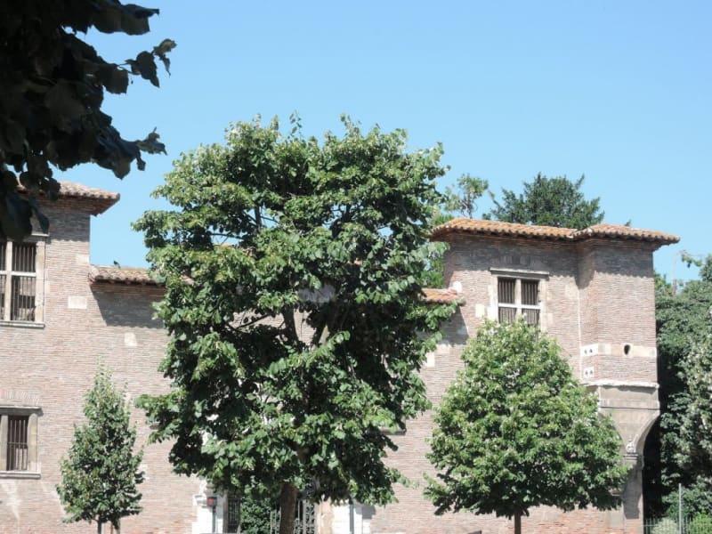 Sale apartment Toulouse 346000€ - Picture 2