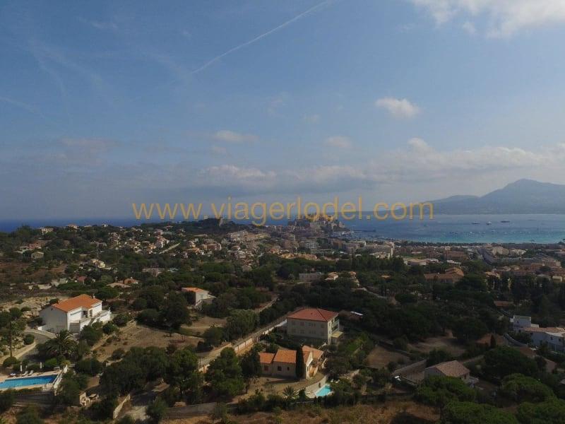 养老保险 住宅/别墅 Calvi 4300000€ - 照片 3
