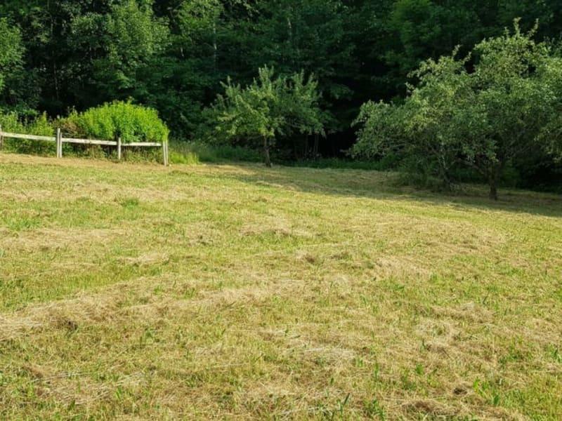 Verkauf grundstück Saint-martin-d'uriage 215000€ - Fotografie 5