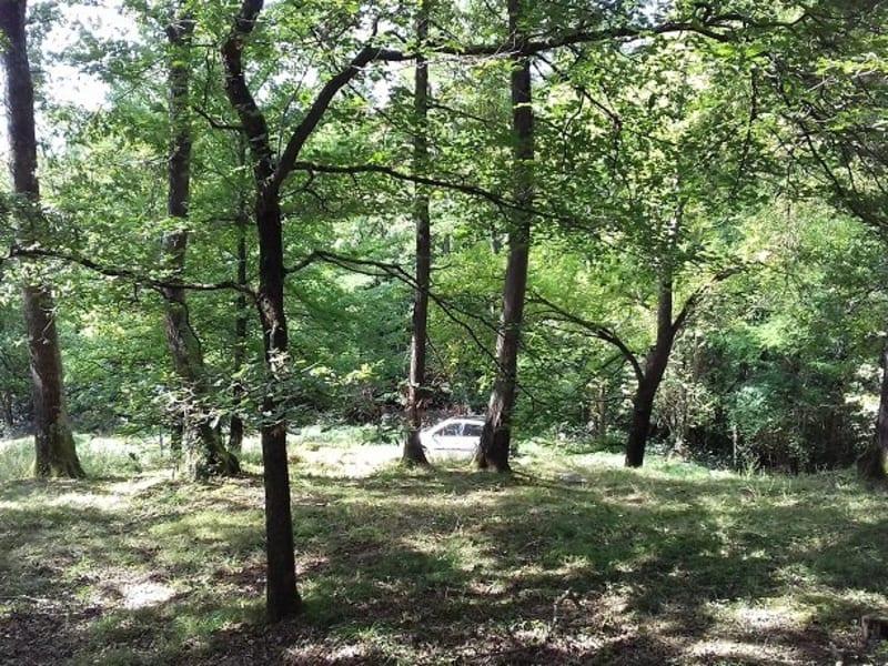 Vente terrain Barbazan debat 30000€ - Photo 1