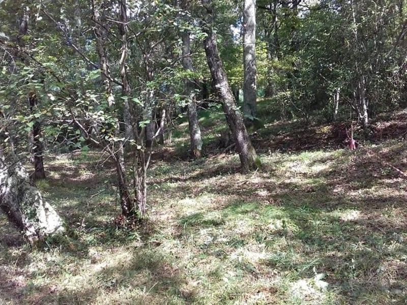 Vente terrain Barbazan debat 30000€ - Photo 4