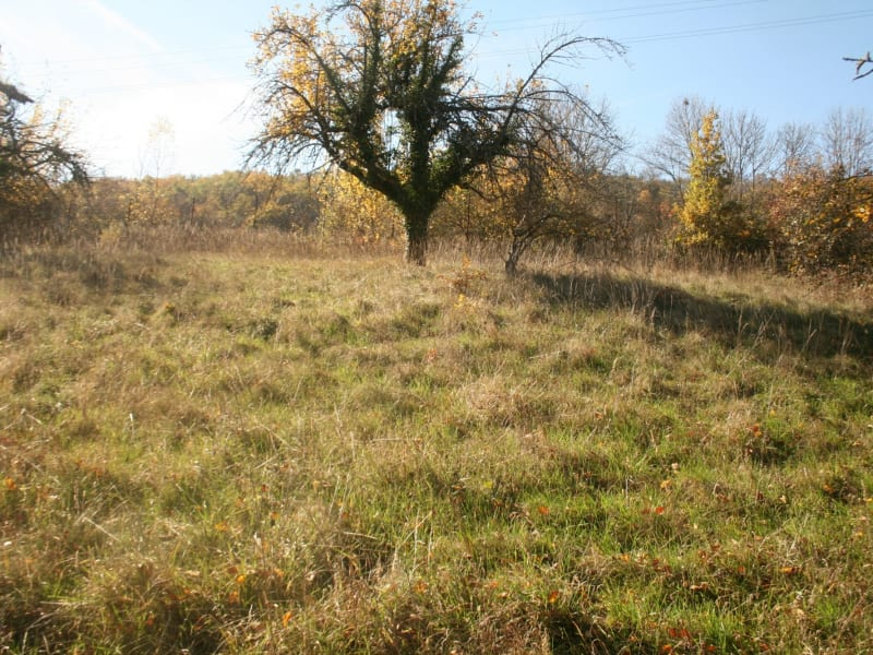 Sale site Brives charensac 54500€ - Picture 1