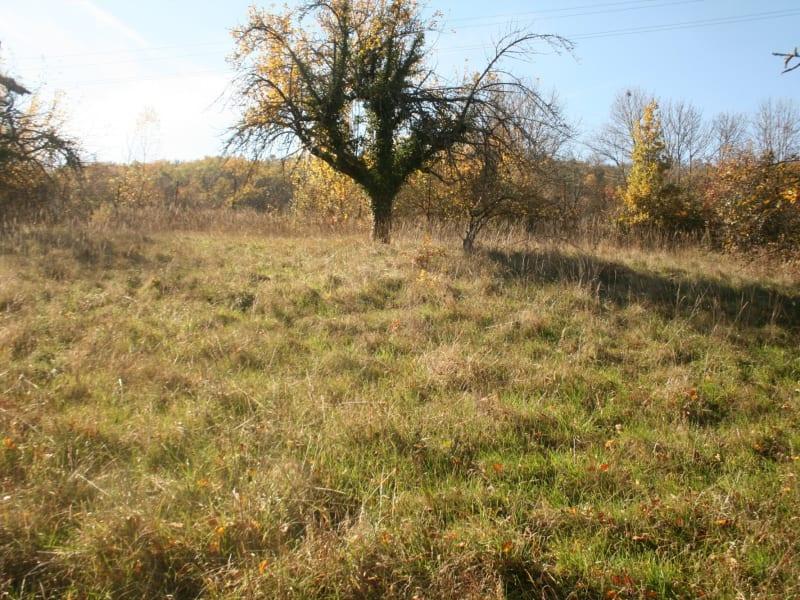 Vente terrain Brives charensac 54500€ - Photo 1