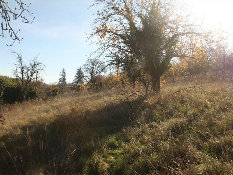Vente terrain Brives charensac 54500€ - Photo 2