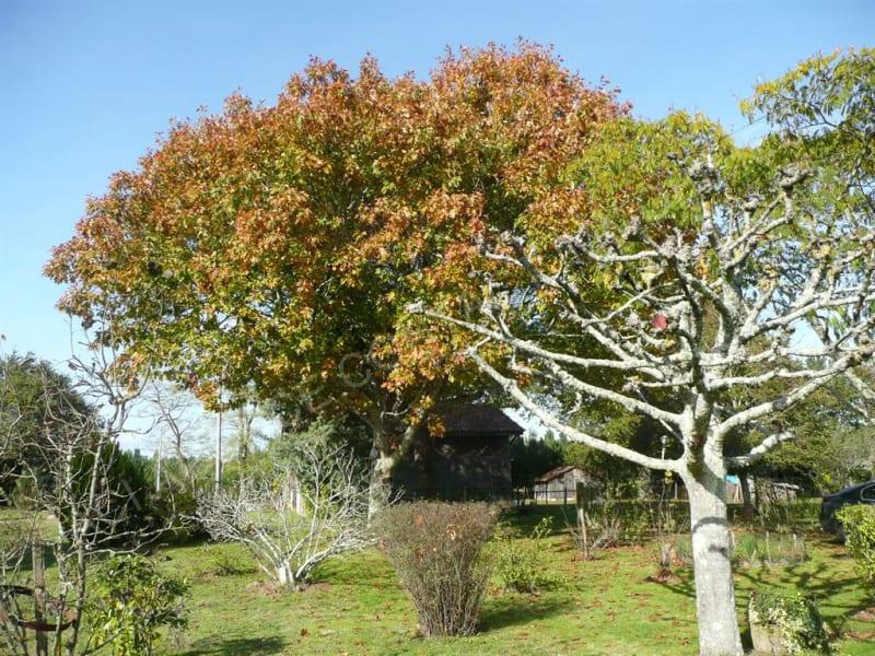Sale house / villa Mont de marsan 241500€ - Picture 10