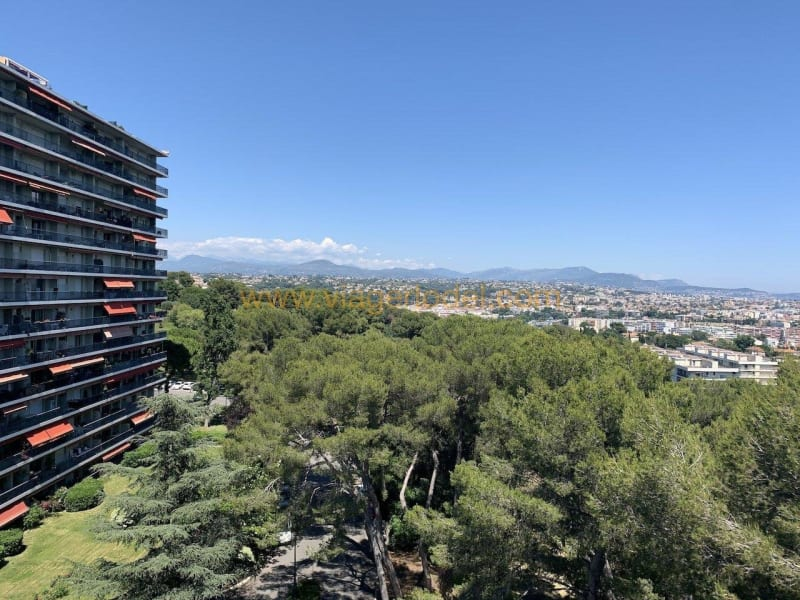 Life annuity apartment Cagnes-sur-mer 289900€ - Picture 10