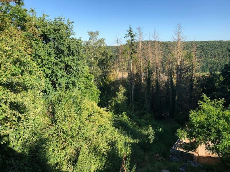 Verkauf grundstück Heiligenberg 77500€ - Fotografie 5