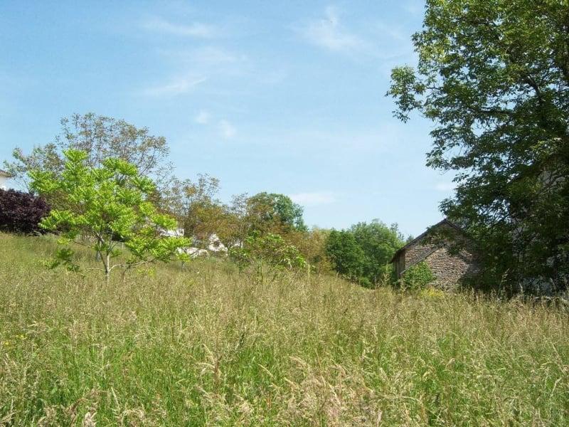 Vendita terreno Navarrenx 42000€ - Fotografia 4