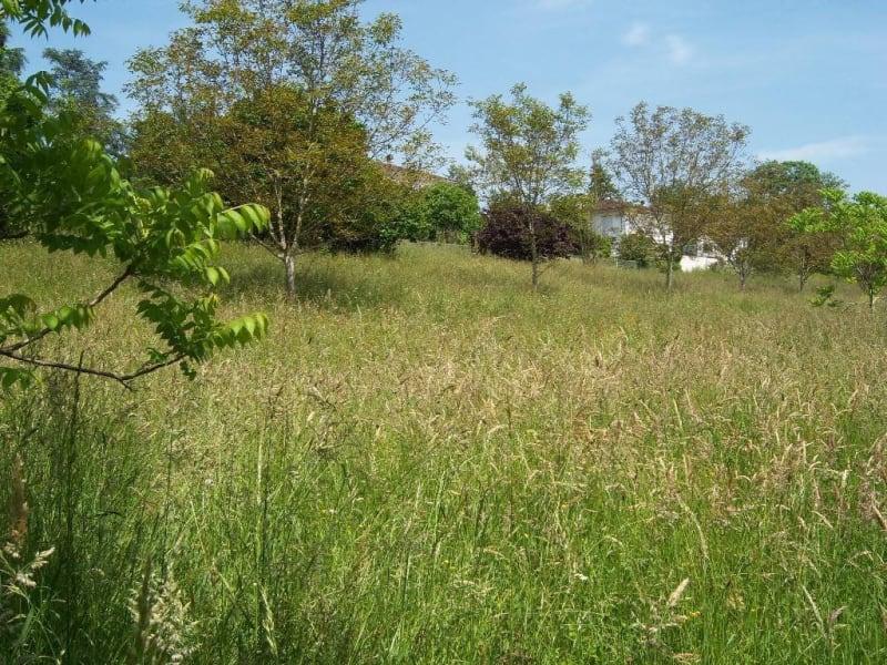 Vendita terreno Navarrenx 42000€ - Fotografia 5