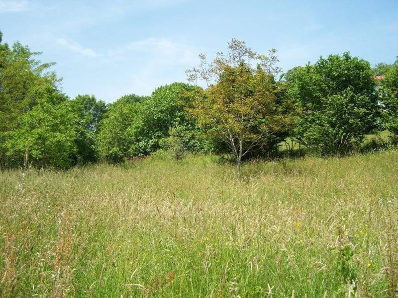 Vendita terreno Navarrenx 42000€ - Fotografia 6