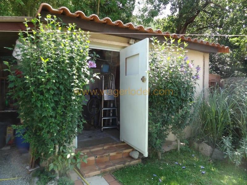 Life annuity house / villa Céret 60000€ - Picture 3