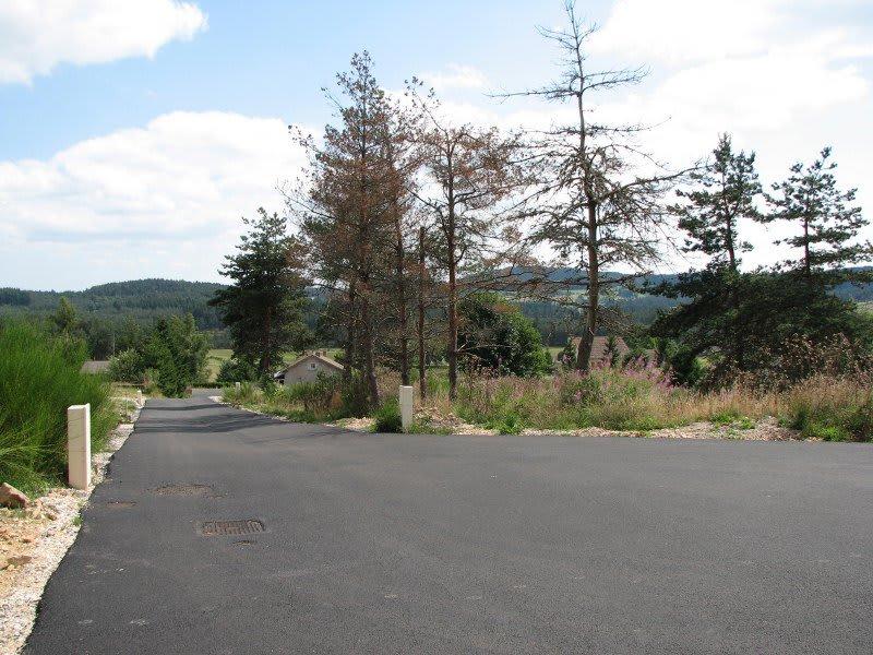 Vente terrain Le chambon sur lignon 30000€ - Photo 1
