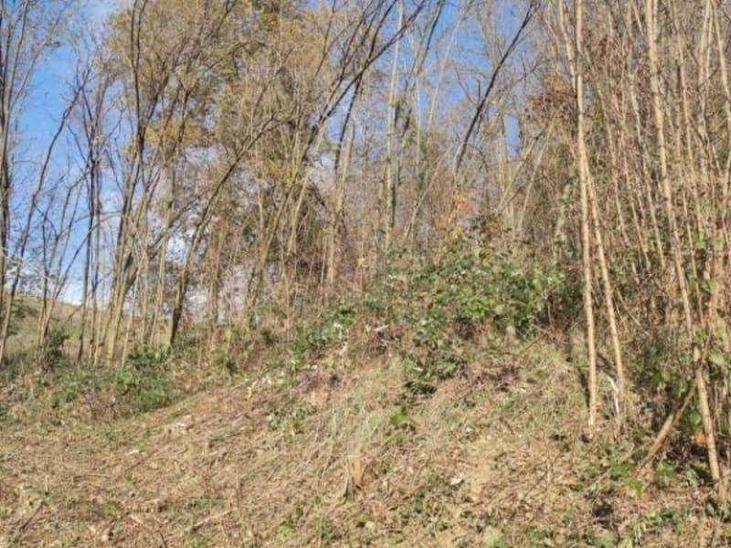 Vente terrain Coise st jean pied gauthie 156000€ - Photo 3