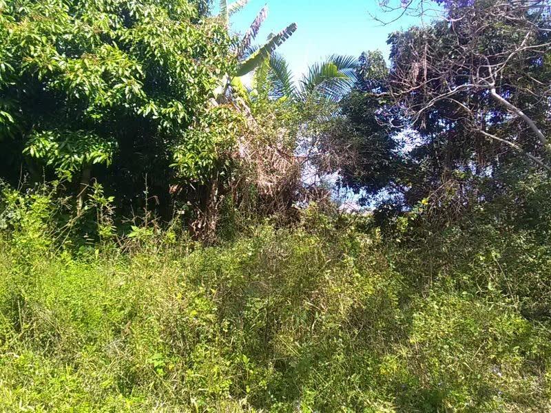 Vente terrain La possession 372000€ - Photo 2