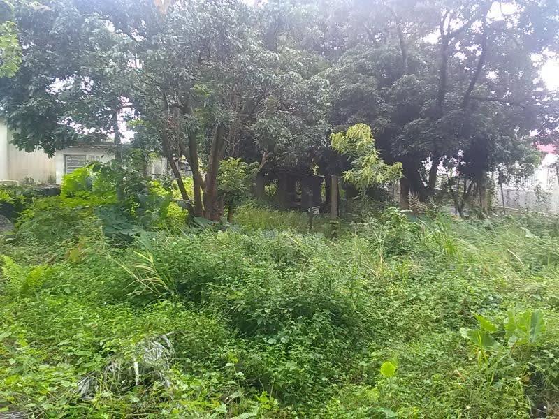 Vente terrain St andre 262000€ - Photo 3