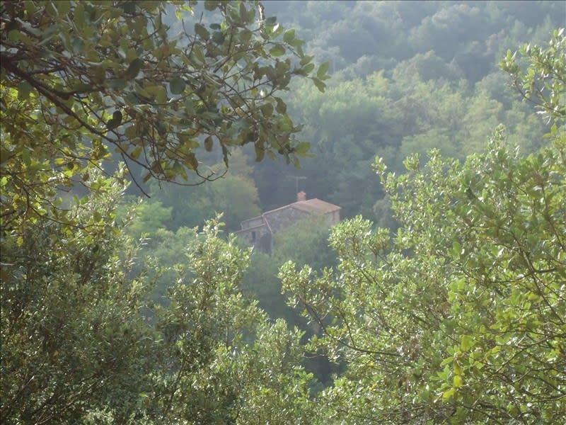 Sale house / villa Calmeilles 324000€ - Picture 6