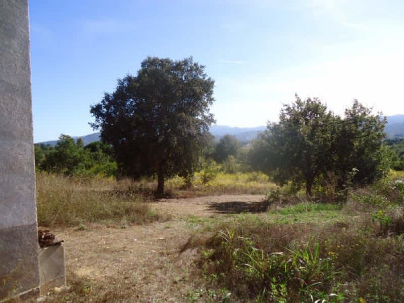 Verkauf grundstück Ceret 38500€ - Fotografie 3