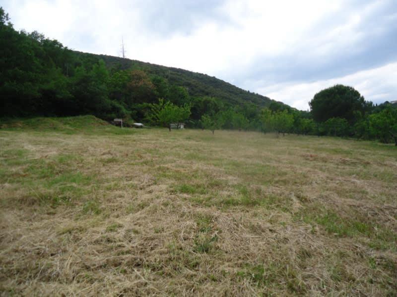 Verkauf grundstück Ceret 177000€ - Fotografie 1