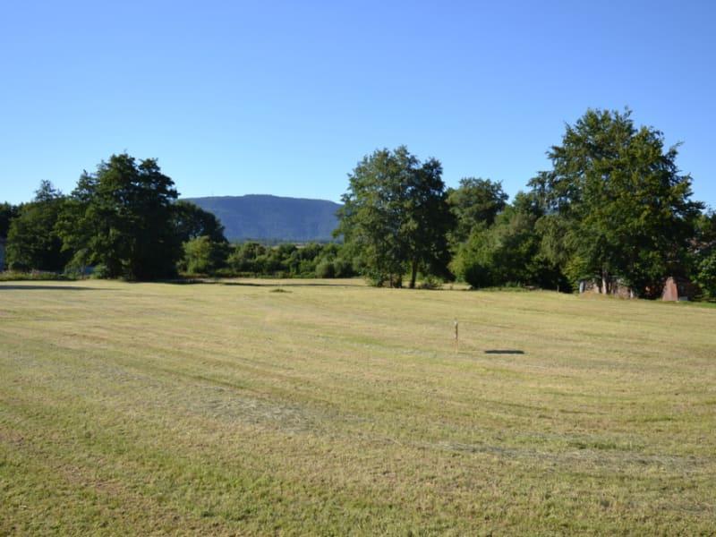 Vente terrain Remomeix 45000€ - Photo 2
