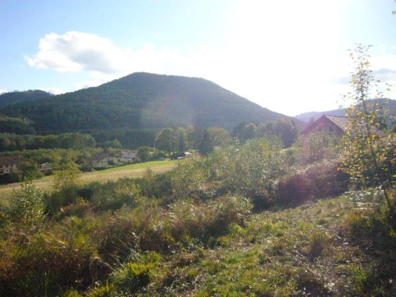 Vente terrain Saint die 29600€ - Photo 3