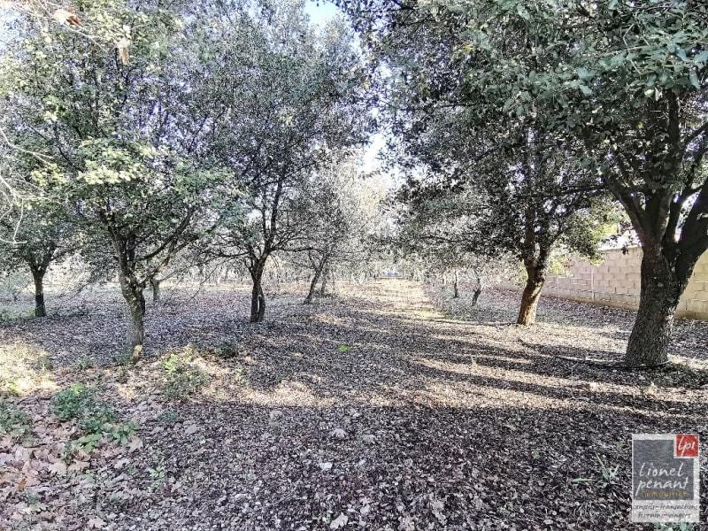 Vente terrain Carpentras 130000€ - Photo 2