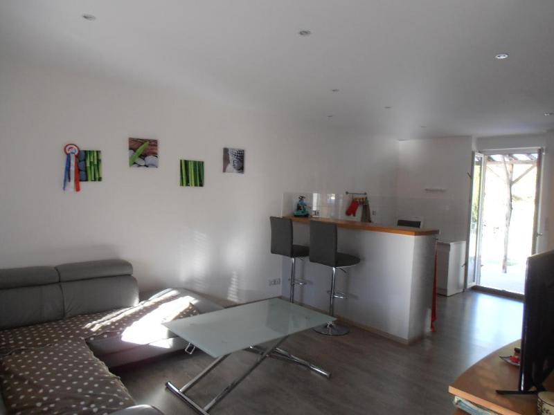 Location appartement Montreal la cluse 671€ CC - Photo 1